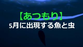 5月から出る虫・魚